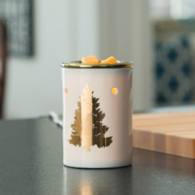 Golden Fir Tart Warmers - Candle Warmers by Candle Crest