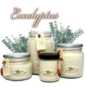 Eucalyptus Scented Soy Candles by Candle Crest Soy Candles Inc