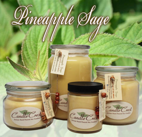 Pineapple Sage Soy Candles by Candle Crest Soy Candles Inc